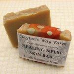 Healing Neem