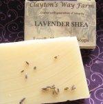 Creamy Lavender w/ Shea & Goat Milk