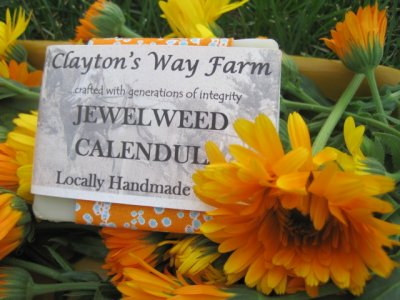 Jewelweed Calendula